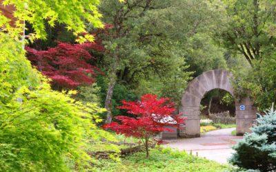 El Jardín abrirá sus puertas en el mes de abril