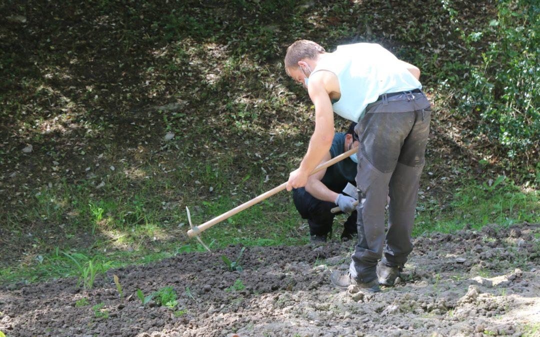 Estudiantes del Instituto Agrario de Arkaute, el IES de Murgia y Egibide realizan sus prácticas en el Jardín