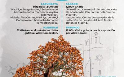 I Exposición de Verano Bonsais del Jardín Botánico Santa Catalina
